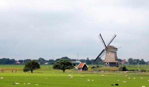 El ciclista que recorre Holanda no deja de ver sus molinos