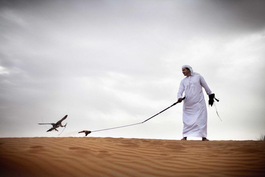 CULTURE - Desert and Falcon_opt