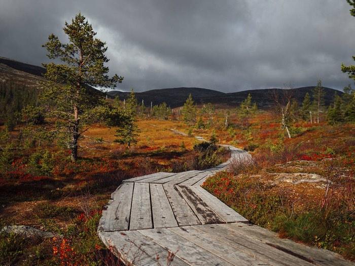 La Laponia en verano