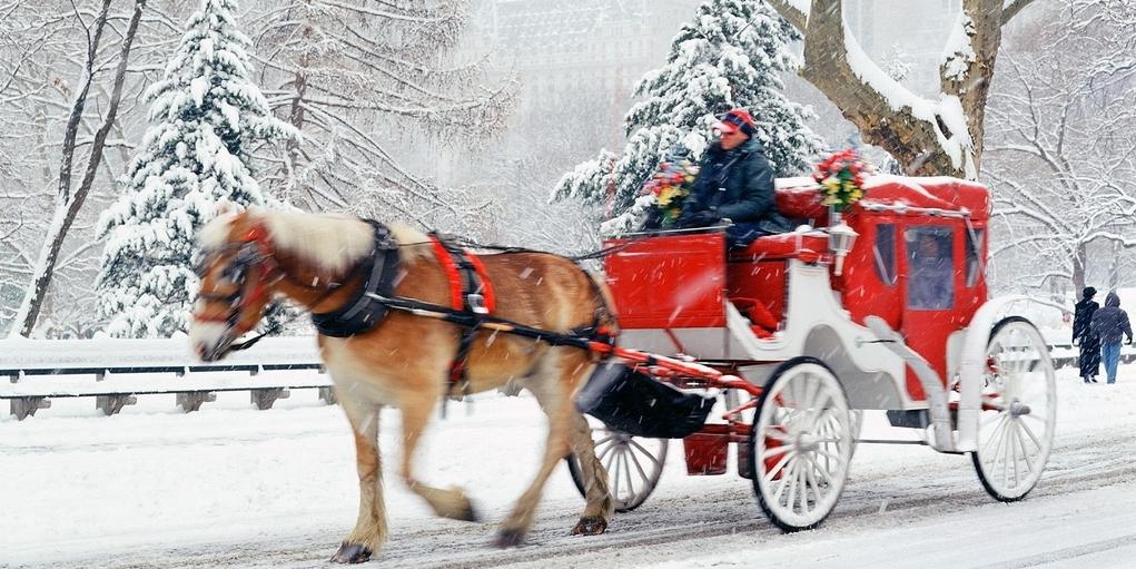 La Navidad en Nueva York