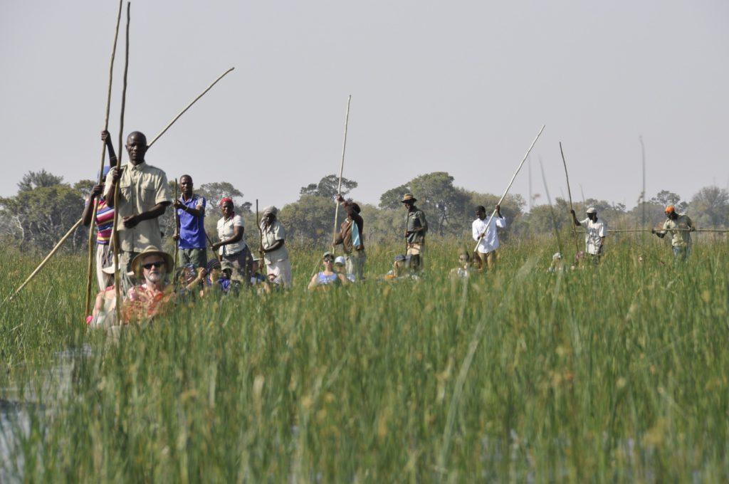 Delta Okavango en kayak