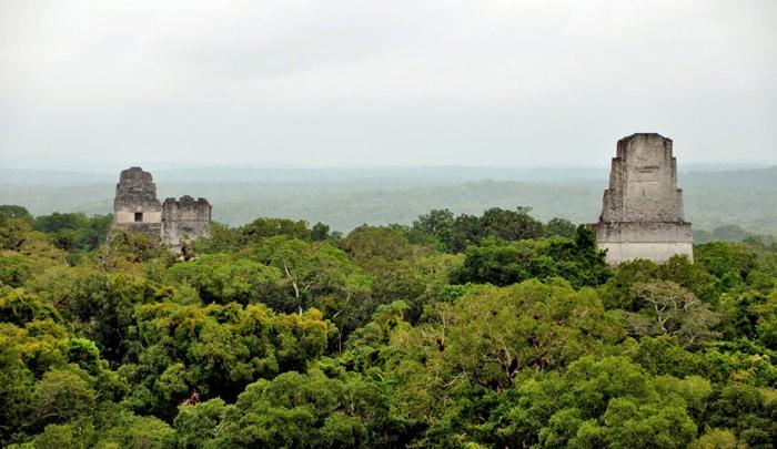Tikal en medio de la selva de Guatemala